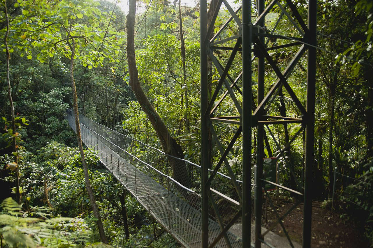 Canopy San Luis Vive Travels (3)